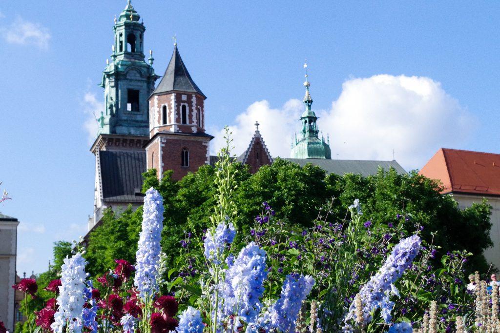 kraków burg wawel castle flowers poland