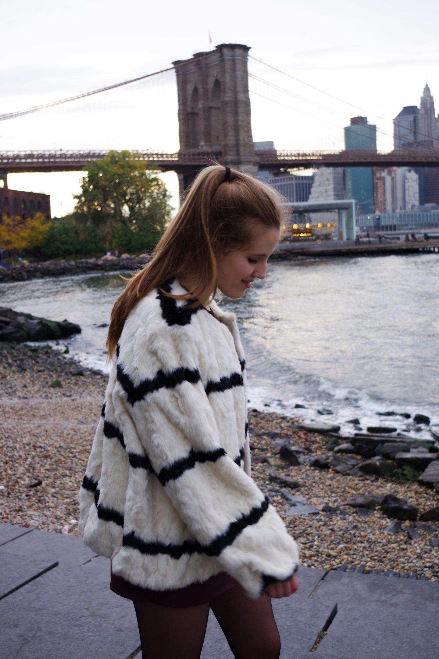 New York Guide 1.0 |Brooklyn